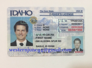 Ownership of fake id and heavy drinks.