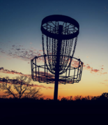 What Is Disk Golf and Why Do People Love It?